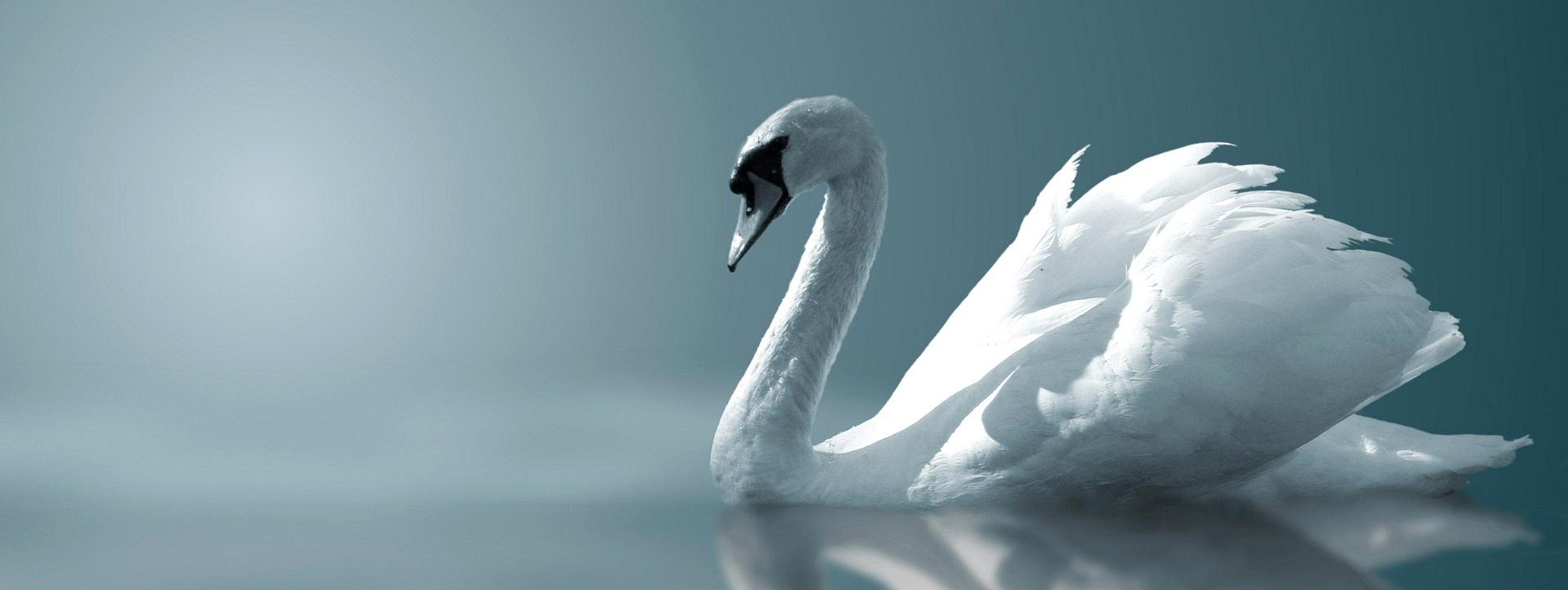 Guidance par la voix des Anges…un signe de l'au-delà qui permet de comprendre…